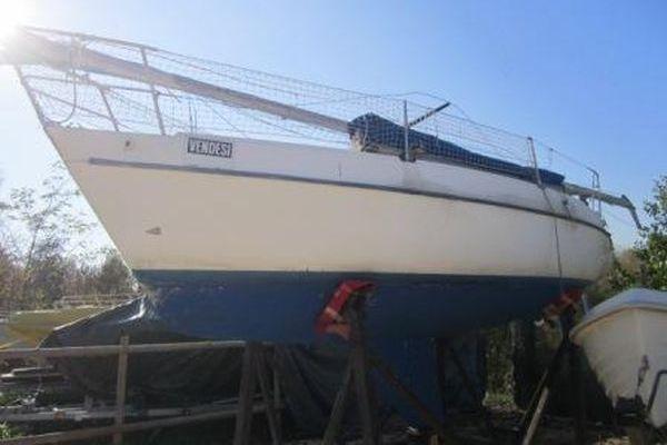 Segelboot Zuanelli 25